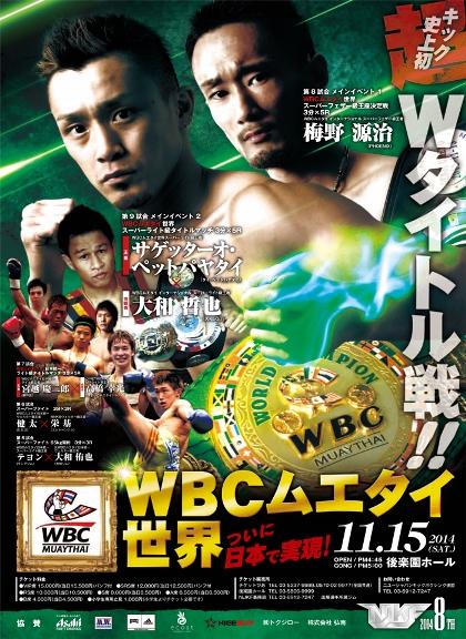 NJKF2014年11月15日興行のポスター
