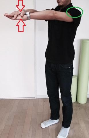 フロントレイズ・アイソメトリック(三角筋を鍛える)
