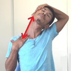 胸鎖乳突筋ストレッチ・両手でサポート