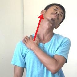 胸鎖乳突筋ストレッチ片手を添える