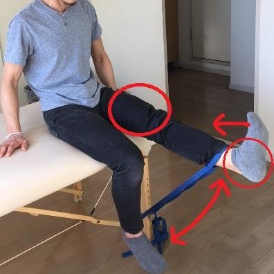 膝のトレーニング2